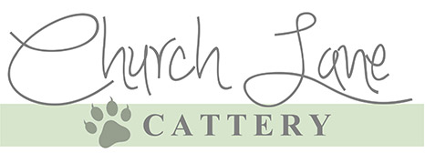 A friendly home for your cats, Cattery, Holton-le-Clay